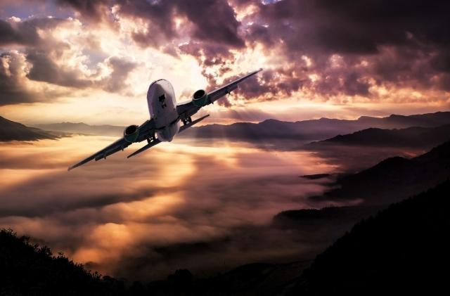 Право на льготный перелёт из ДФО могут предоставить многодетным родителям
