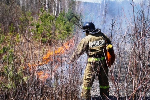 Режим ЧС в лесах отменён в Красноярском крае