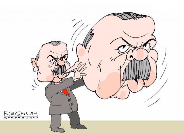 Амбиции Эрдогана