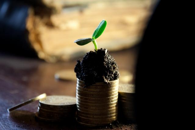 Жителям ДФО пока не предлагают ничего, кроме точечных инвестиционных потуг