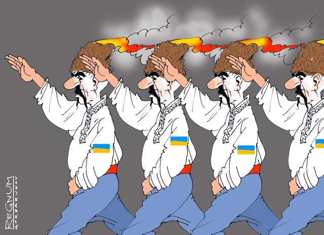 Как и зачем спикер украинского парламента уничтожает «прямую демократию»