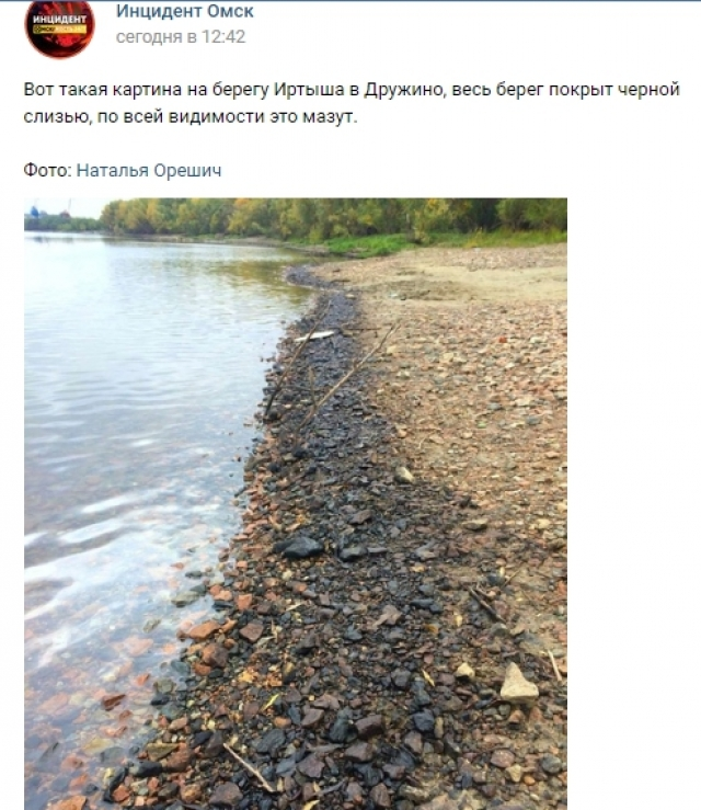 Омичи сообщают о «чёрной слизи» по берегам Иртыша
