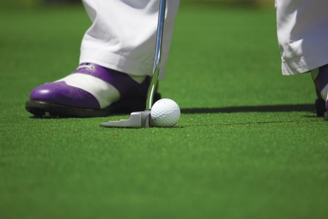 Президент Зимбабве предложил Трампу построить поле для гольфа