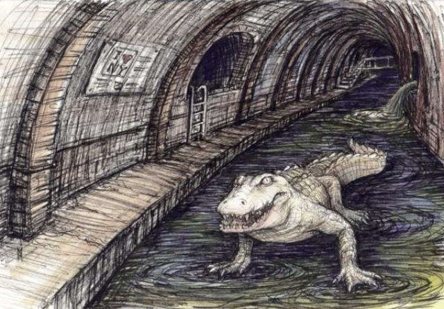 Крокодил в канализации Нью Йорка