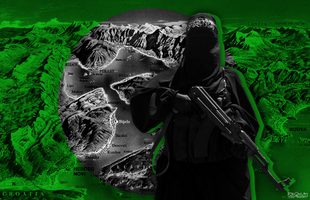 Экстремистов из Идлиба приветят на Украине?