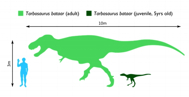 РАН и страна динозавров: полвека сотрудничества