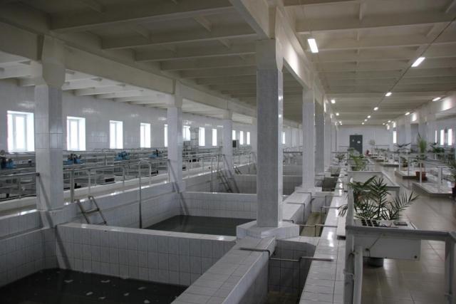 Депутаты муниципалитета Ярославля предложили вернуть городу водоканал