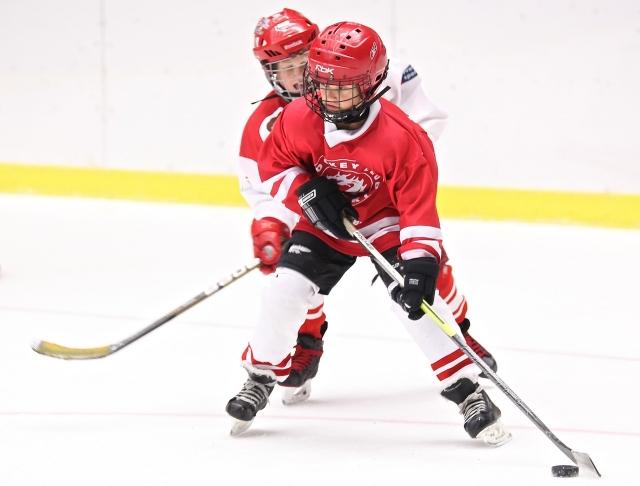 «Красная машина» в Тульской области: как развивают детско-юношеский хоккей