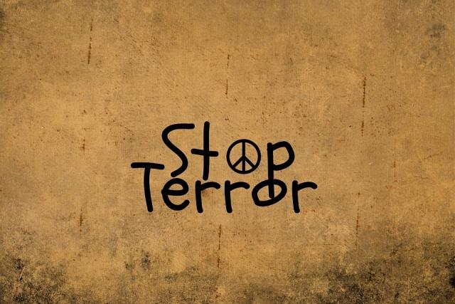 Борьба с терроризмом находится в числе безусловных приоритетов РФ — Путин