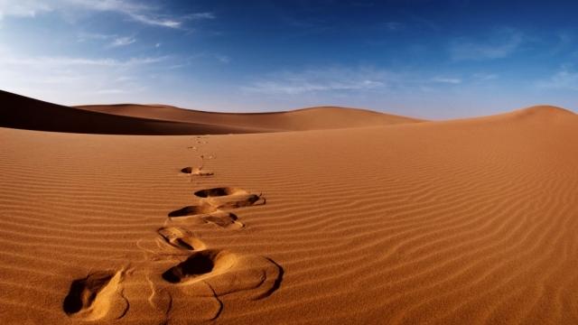 Алжир отрицает высылку беженцев в пустыню