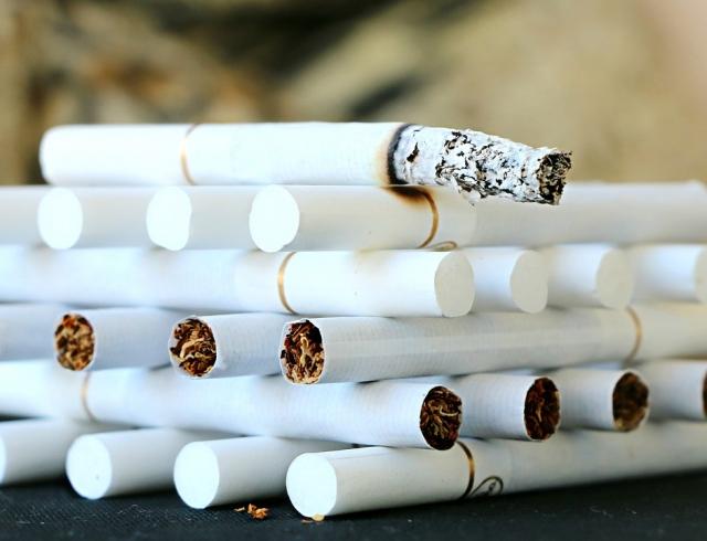 Танзания рассчитывает на мировую табачную компанию в развитии экономики