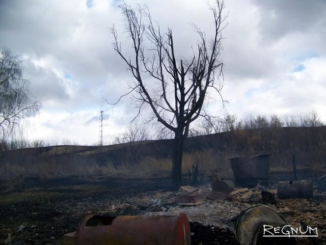 Обугленное дерево — всё, что осталось на месте жилого дома, в котором ещё вчера счастливо проживала пожилая пара. Теперь у стариков не осталось ничего