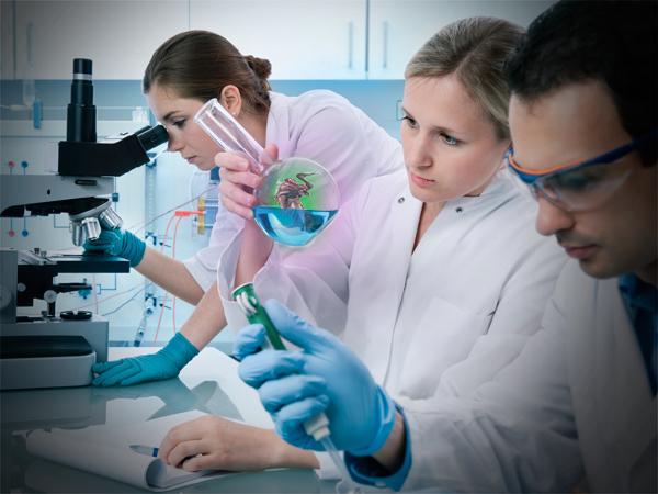 молодые ученые россии и их достижения
