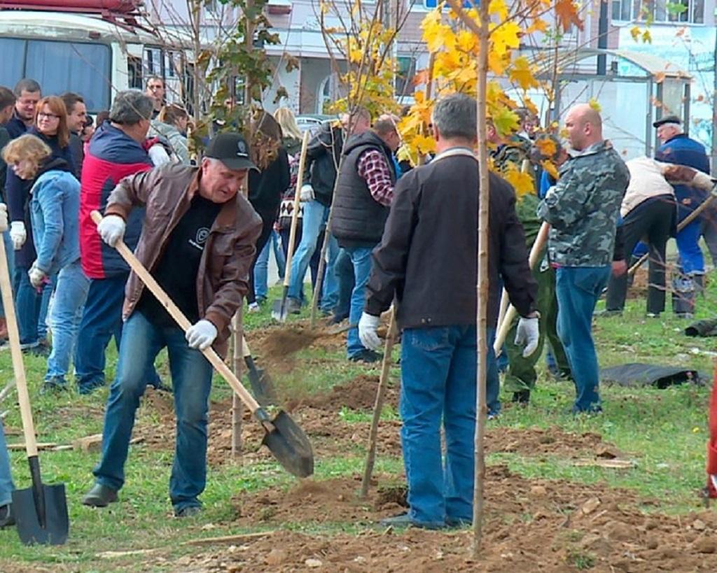 За день в Калуге было высажено около 1000 деревьев