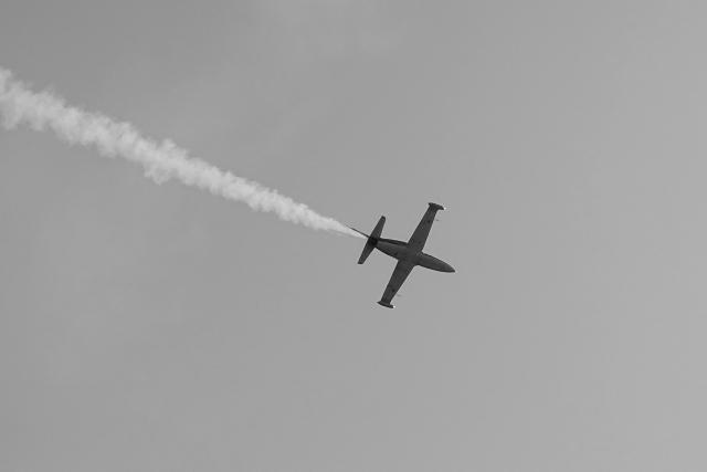 Пилоты рухнувшего в Азовское море Л-39 погибли - Минобороны РФ