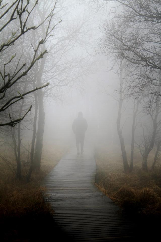 В Москве из-за тумана объявили «желтый» уровень опасности