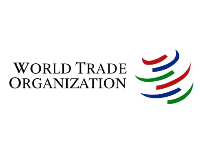 Украина подала жалобу в ВТО на Армению, Киргизию и Казахстан
