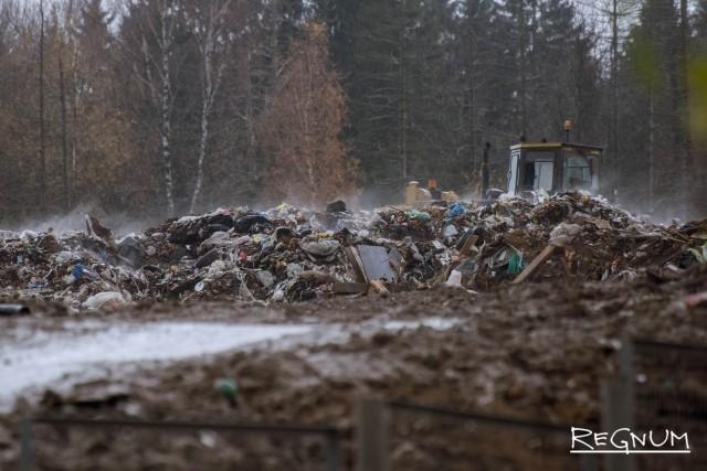 Это мусорная сортировка, расположенная в нескольких десятках метров от первого дома деревни Ядрово