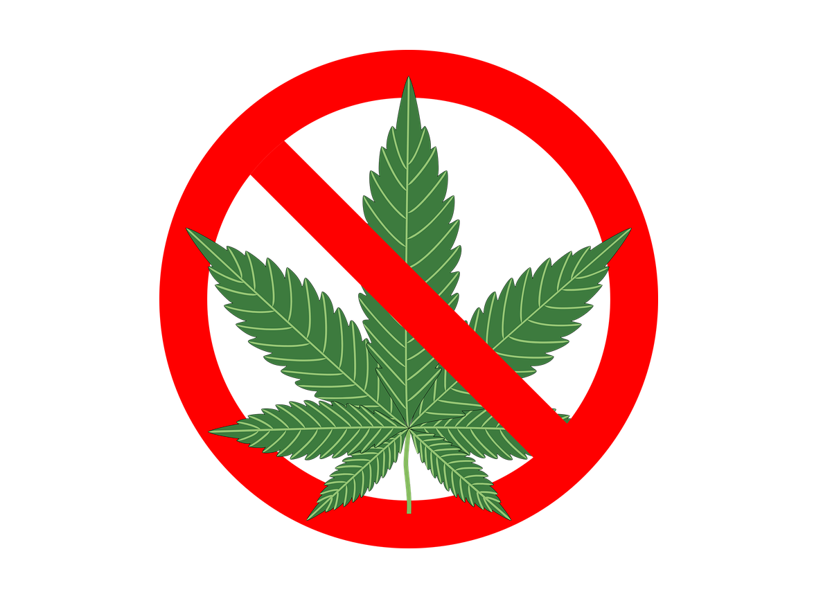 Как по грузински конопля доклад про марихуану