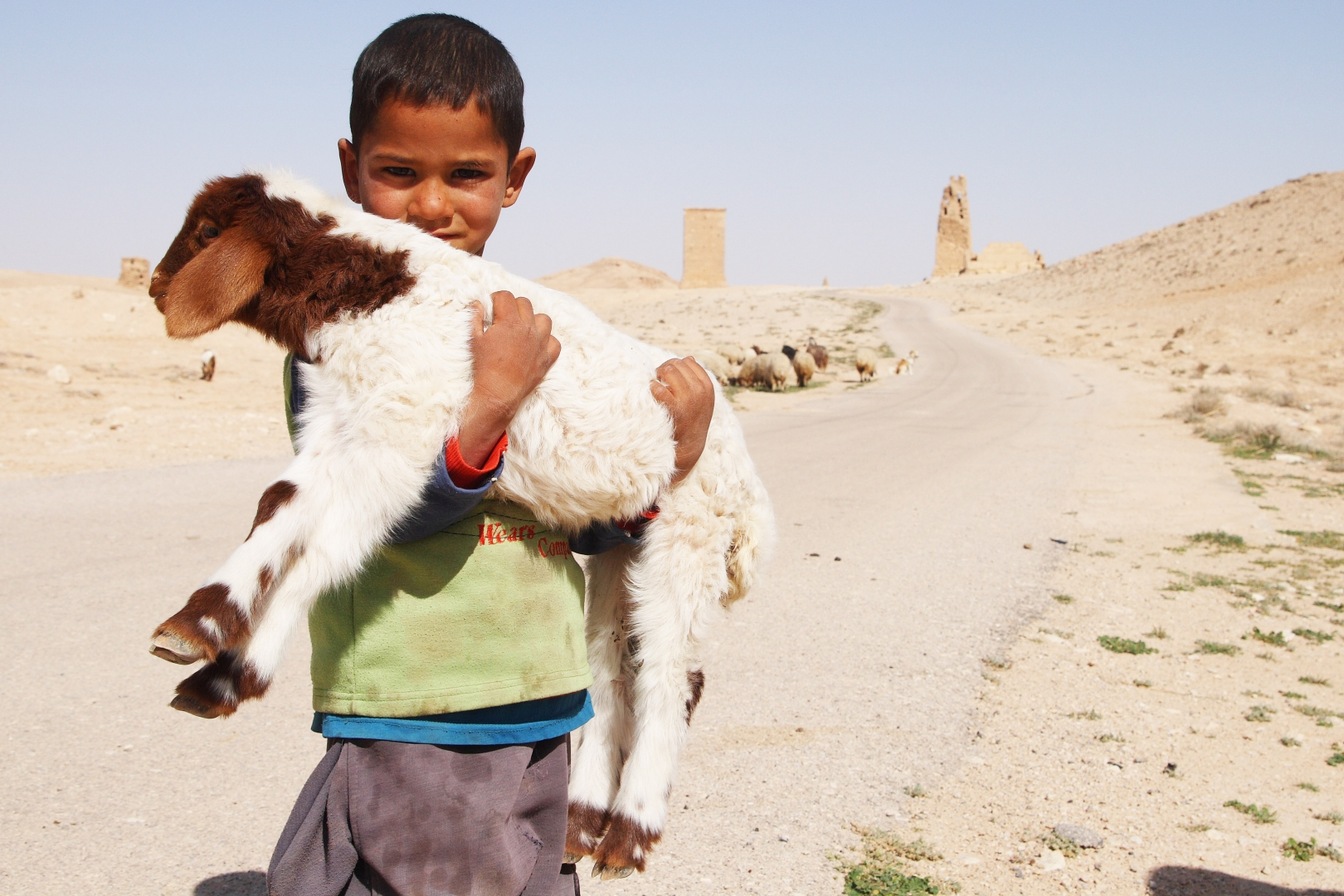 Маленький пастух