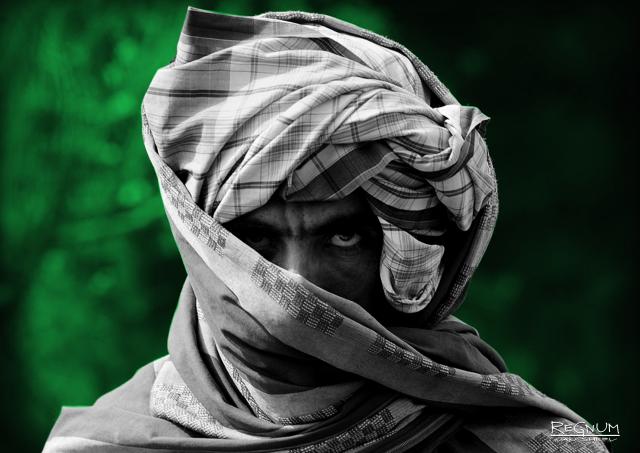 Талибы* отрицают наличие прямых контактов с правительством Афганистана