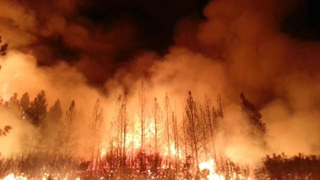 Пожар Camp Firе стал самым разрушительным в истории Калифорнии