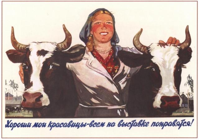 Советский плакат. Хороши мои красавицы — всем на вытсавке понравятся!