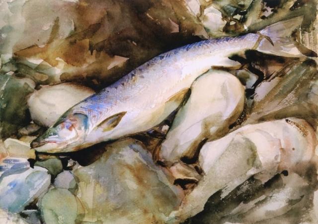 На Сахалине появится комплекс по воспроизводству лососевых видов рыб