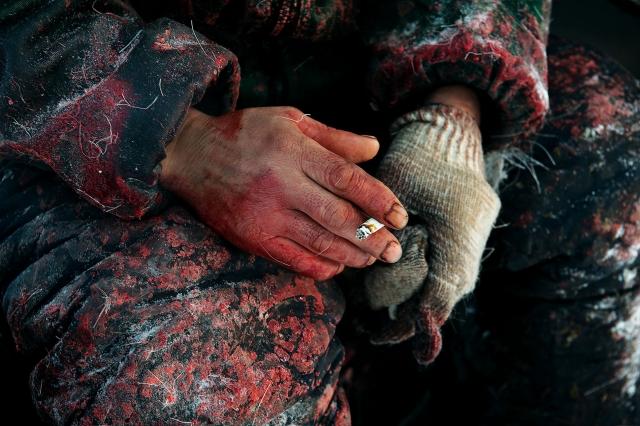 Туши разделывают голыми руками. На улице –30 градусов
