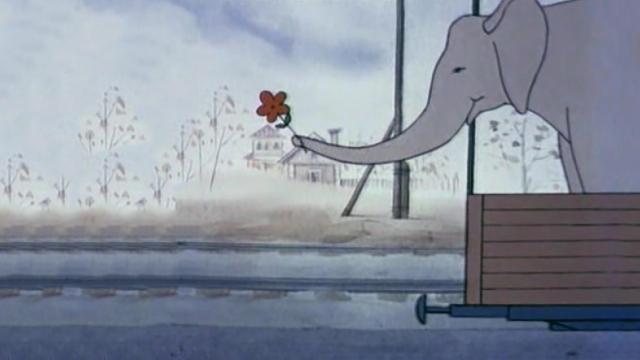 Слона везут по улице