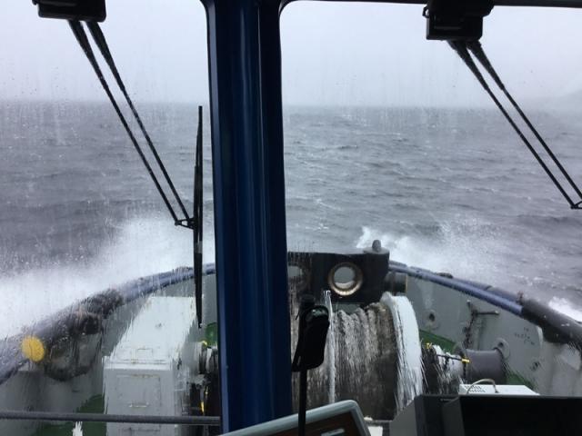 Вид с лоцманского катера