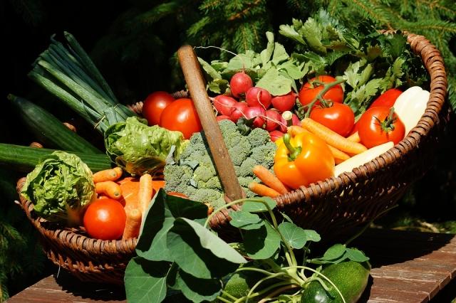 Камчатка не дождётся дешёвых овощей от ТОСЭР: «Ренова» остановила проект