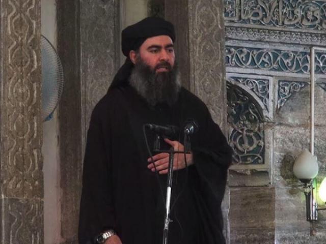 Абу Бакр аль Багдади reg