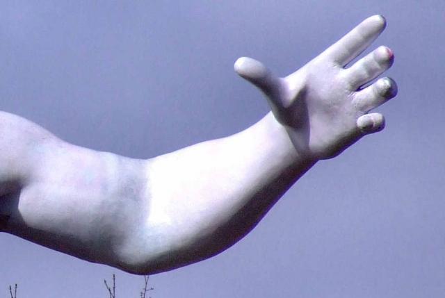 Длинная рука