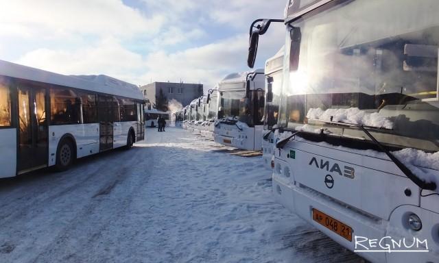 Новые автобусы — около 80