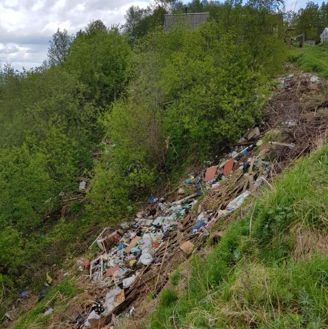 Кто прячет проблему архангельского мусора?