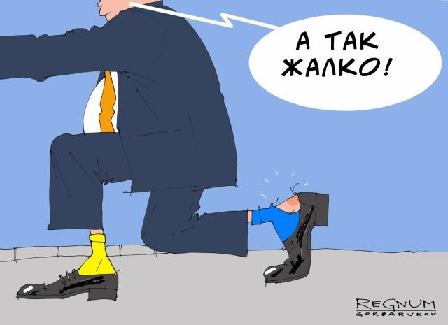Всяк на Западе разыгрывает Украину в своих целях