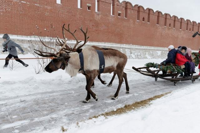 Тула стала «Новогодней столицей России»