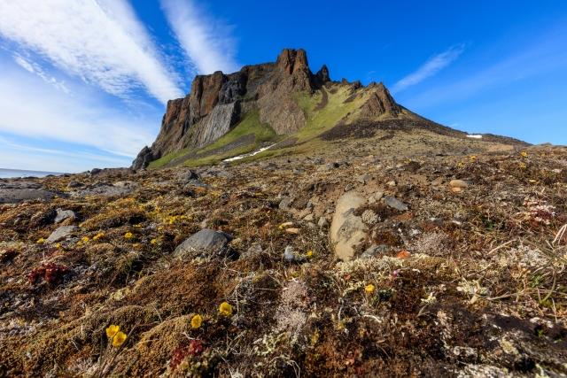Вид на скалу Рубини – она выглядит как средневековый замок. Здесь гнездятся десятки тысяч птиц