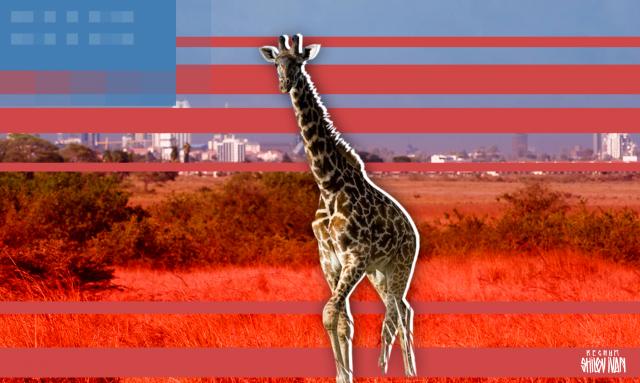 Новая стратегия Вашингтона в отношении Африки: новый фронт против Китая