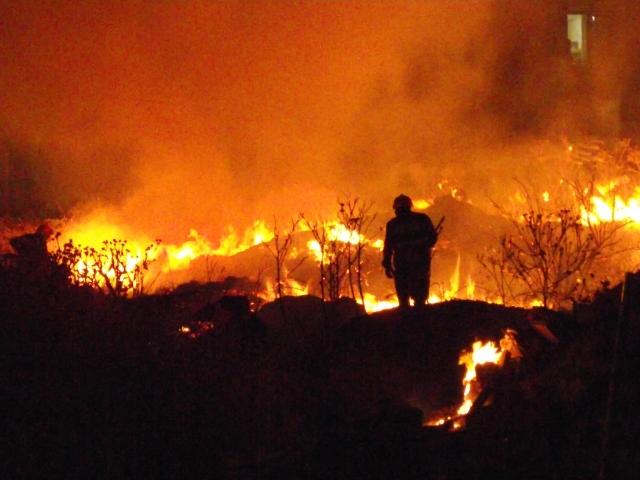 Боевики «Боко Харам»* спалили деревню в Нигерии: сотни людей бежали