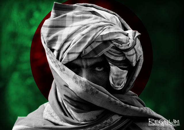 Представитель США по Афганистану: талибы* понимают, что не выиграют войну