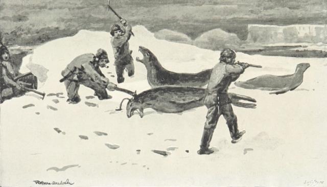 Убийство нерп. 1896. Иллюстрация к материалу ИА REGNUM