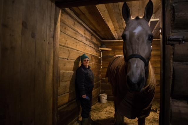 Жанна купила Басю, чистокровную ахалтекинскую кобылу, десять лет назад. Тогда сама Жанна работала в конюшнях, тренировала лошадей, занималась с наездниками
