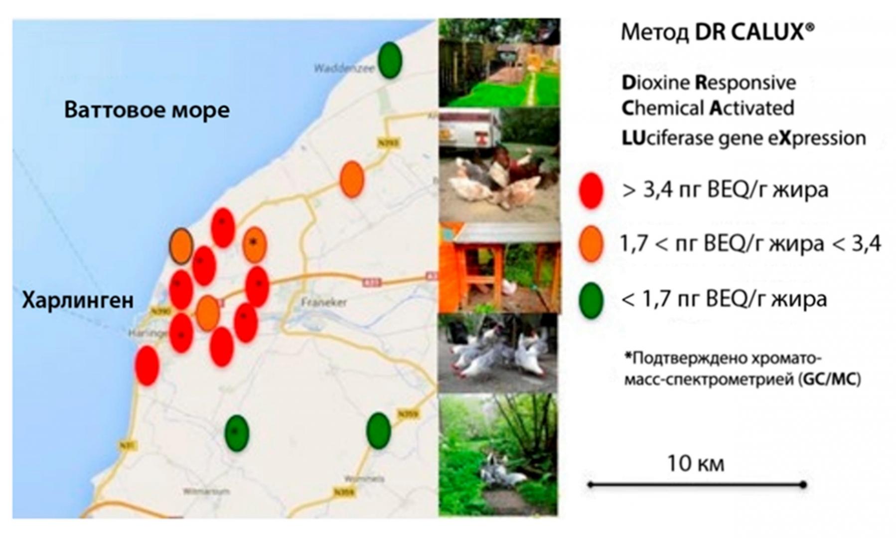 Рис. 1. Результаты анализа куриных яиц на содержание диоксинов в окрестностях REC