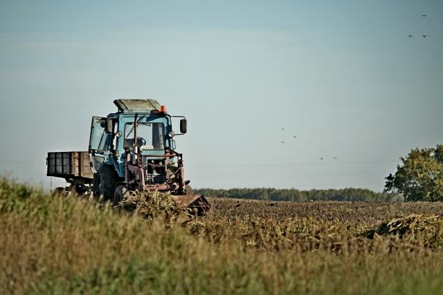 Украина выделит почти $250 млн на развитие сельского хозяйства