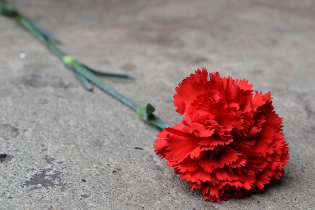 При взрыве в Париже, по уточнённым данным, погибли два человека