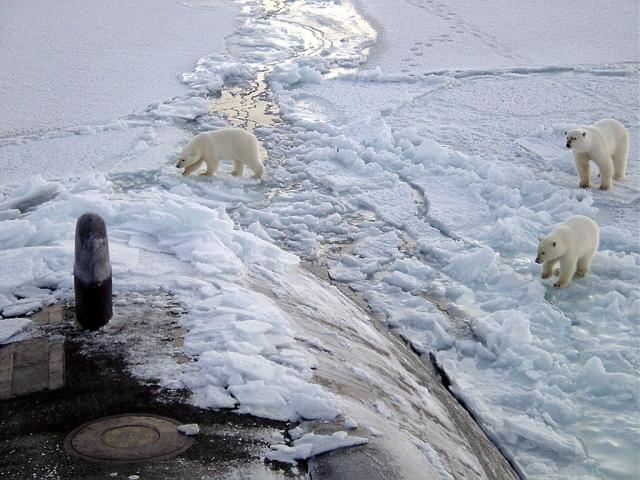 ВМС США собрались потеснить Россию в Арктике