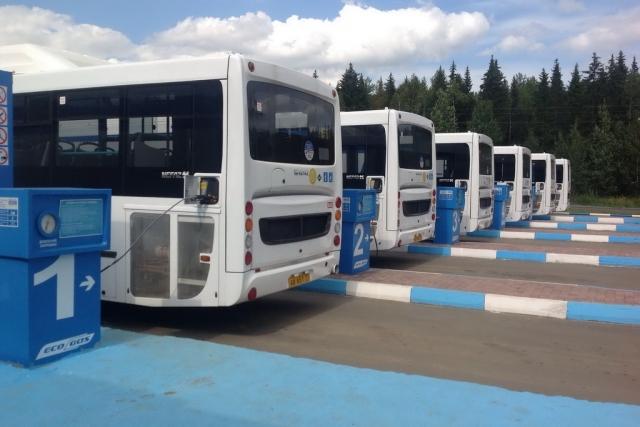 Рейсовые автобусы заправляются газом