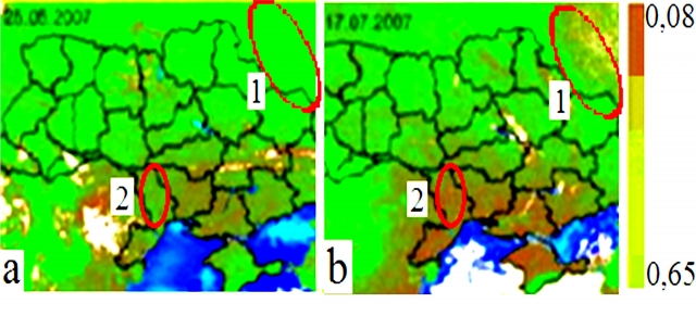 Рис. 10. Индекс вегетации растительности на территории Украины в 2007 г., 1 — регион у КМА, 2 — у магнитной аномалии в центре Одесской обл. (a — июнь, b — июль)